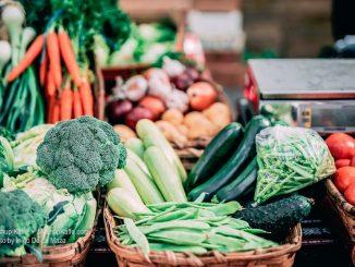 Beautiful display of fresh vegetables