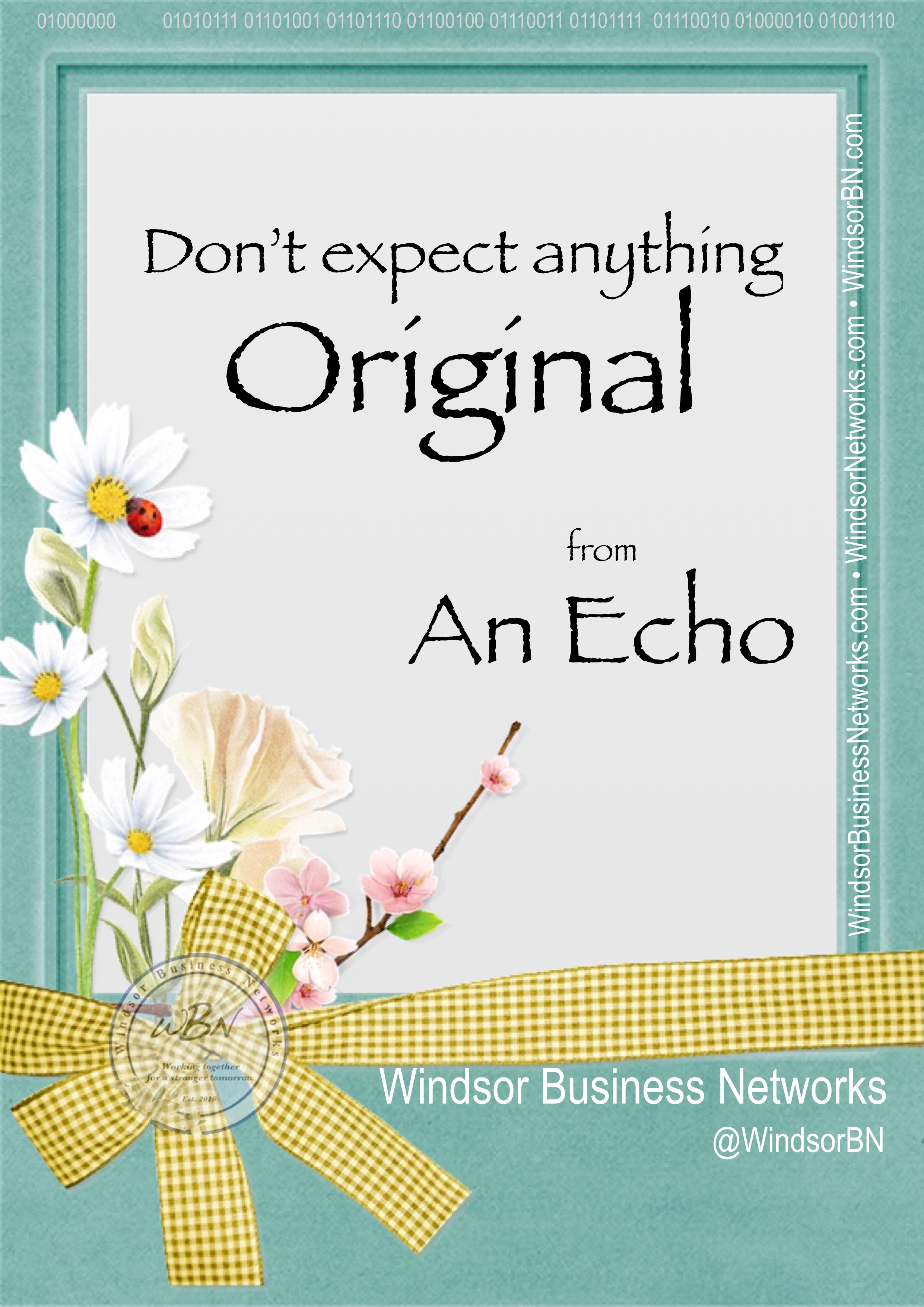 Don't expect anything original from an echo